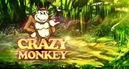 crazy_monkey_gift