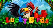 lucky_birds_b
