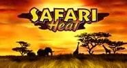 safari_heat