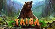 taiga_b