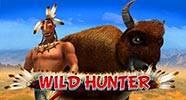 wild_hunter_b